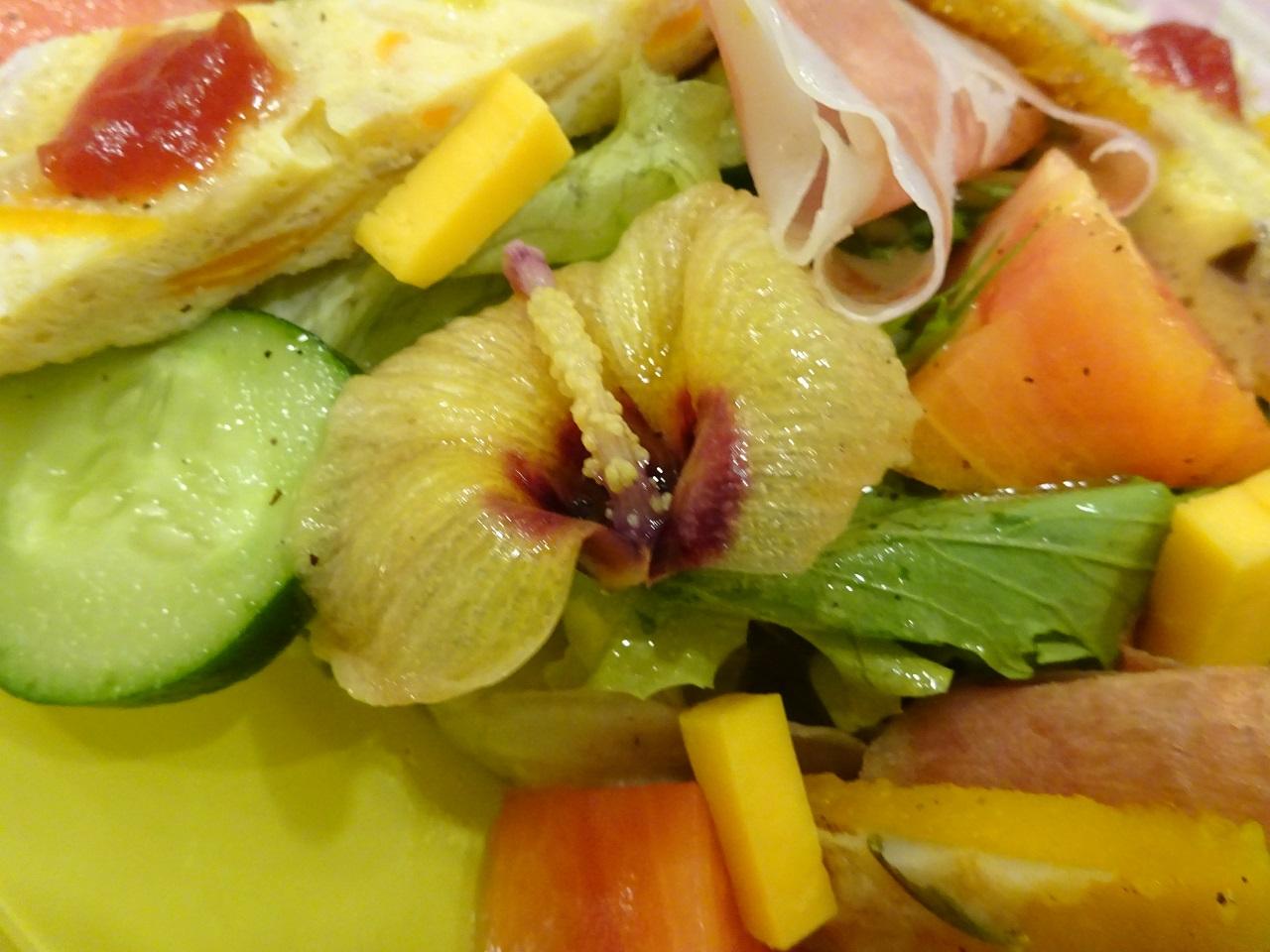 きまぐれサラダ(オクラの花)