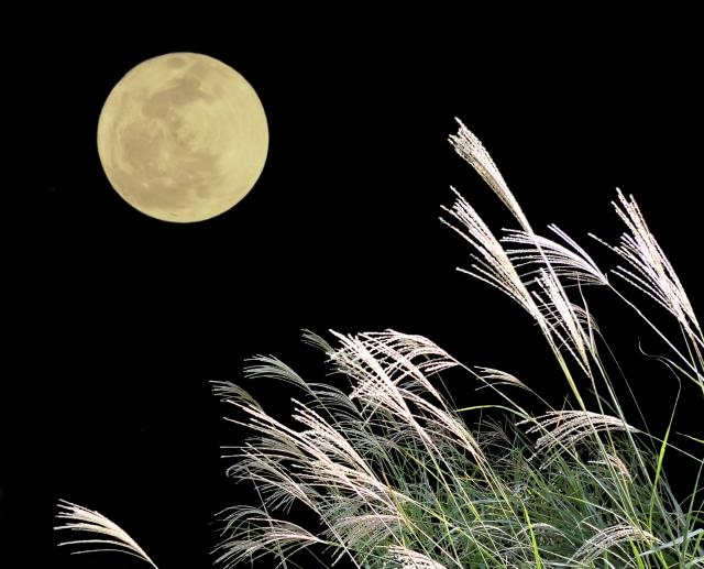 満月と揺れるススキ