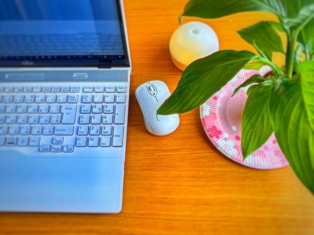 白いパソコンとマウスと観葉植物